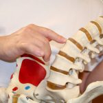 Biomechanical and Subluxation Models of Chiropractic Care are contrasted in Waterloo