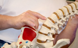 Biomechanical vs Subluxation Model of Chiropractic Care: Which Are You?